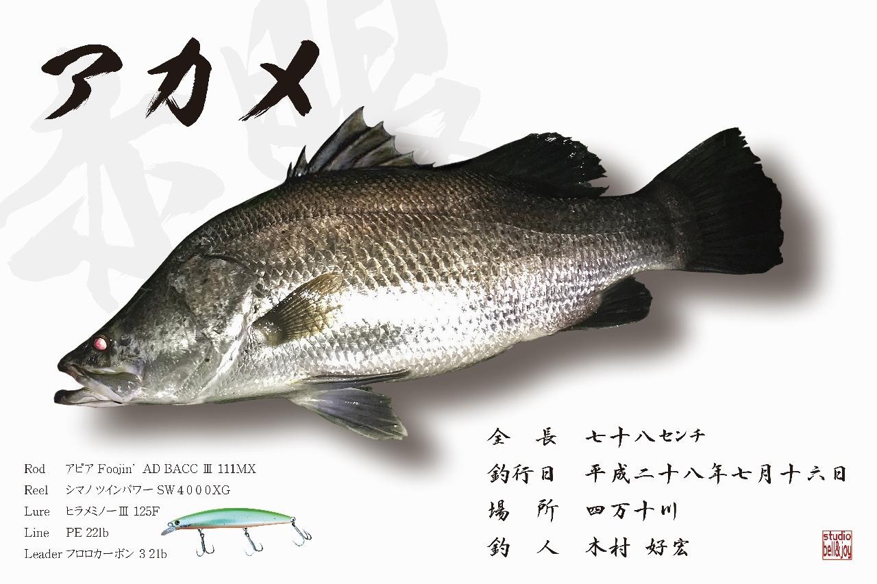 デジタル魚拓アカメ