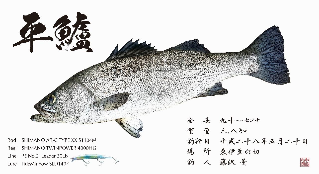 デジタル魚拓ヒラスズキ