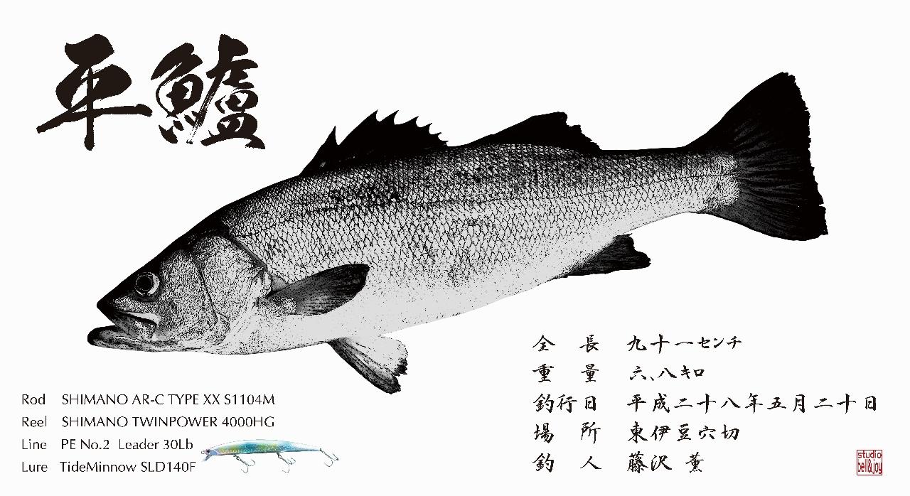 デジタル魚拓平鱸