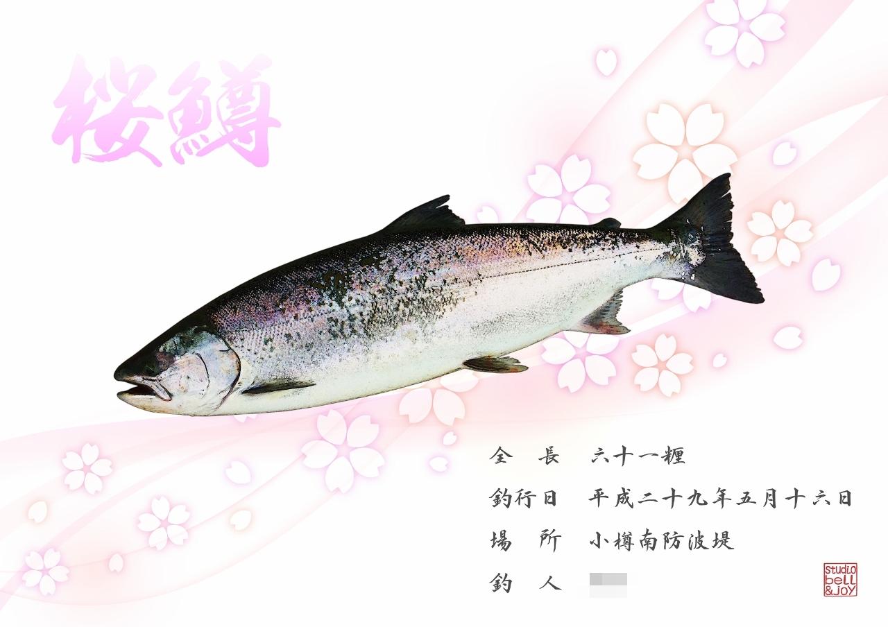 桜鱒デジタル魚拓
