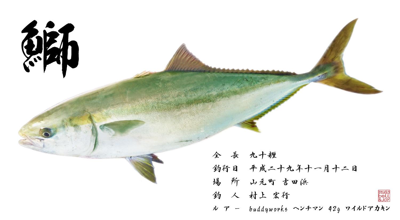 デジタル魚拓鰤