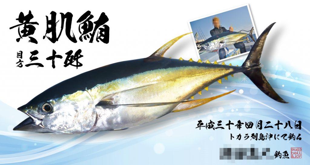 デジタル魚拓黄肌鮪
