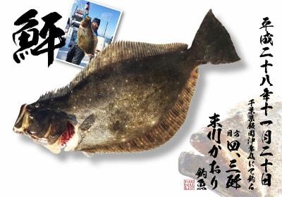 末川様 鮃 デジタル魚拓